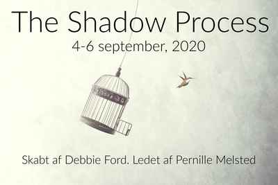 The Shadow Process Retreat (september 2020)