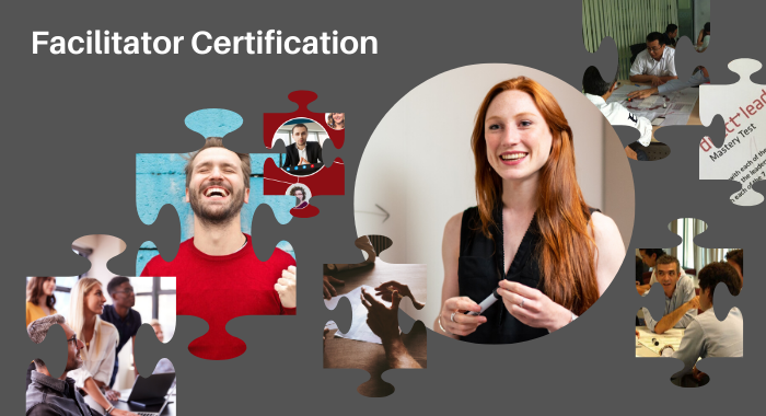 Facilitator Certification - Direct Leadership 700x380