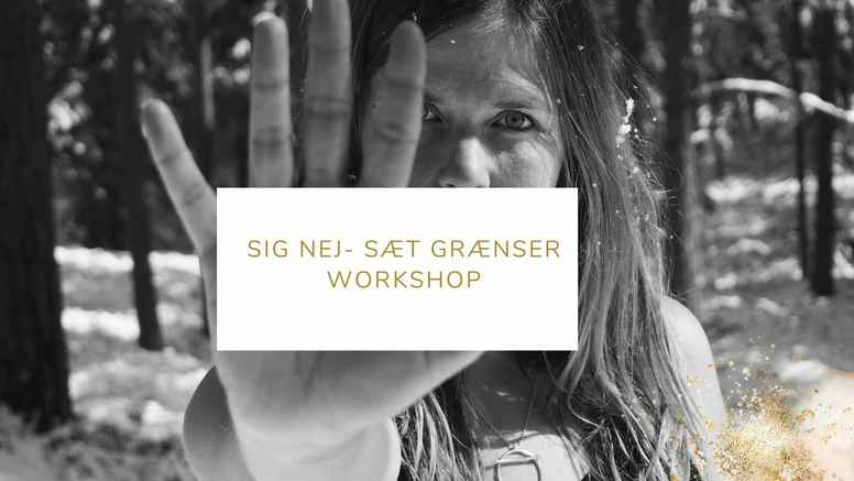 Workshop om Grænser