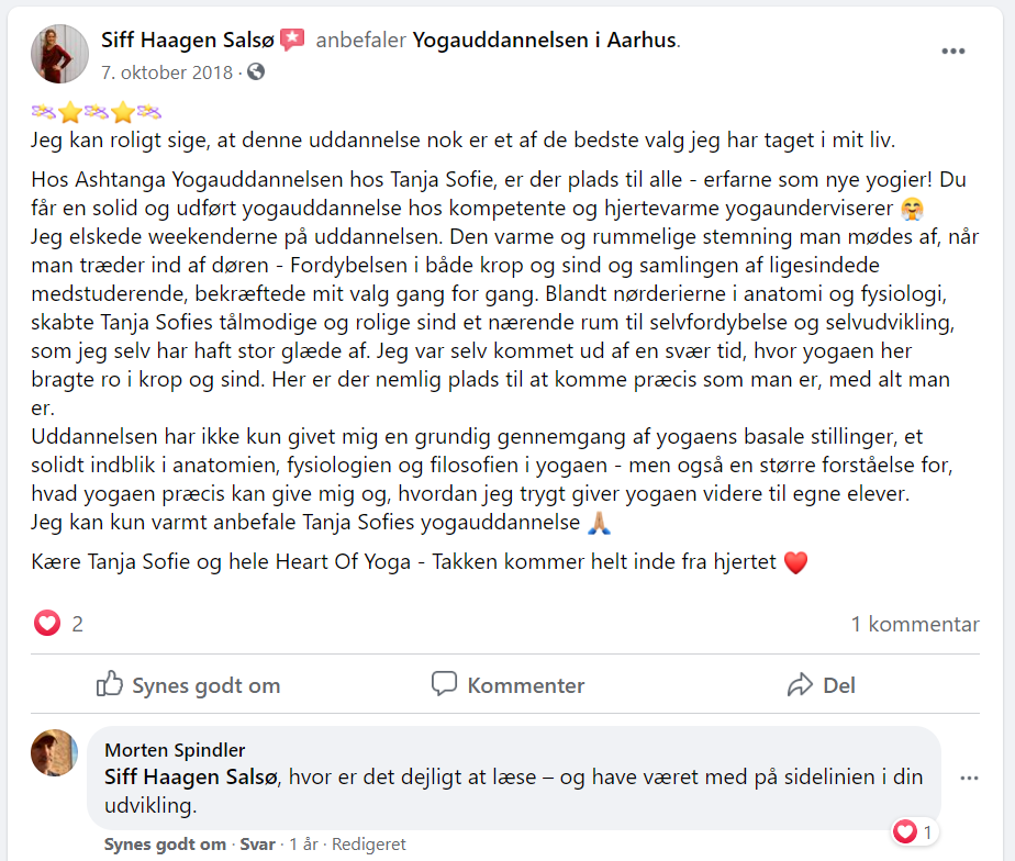 Siff 1 anmeldelse.png