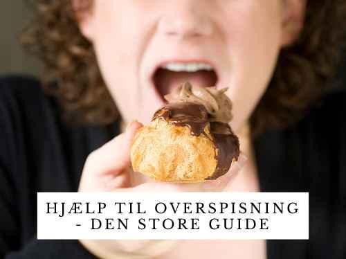 Hjælp til overspisning - den store guide.jpg