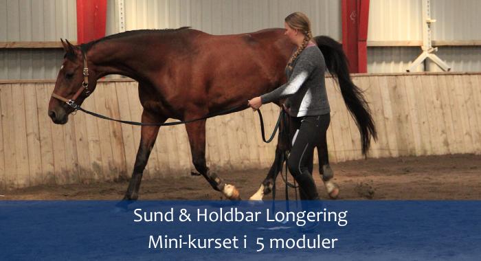 Sund & Holdbar Longering Mini-Kurset i 5 Moduler