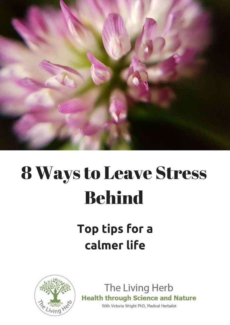 8-ways-to-leave-stress-behind-front-page.jpg