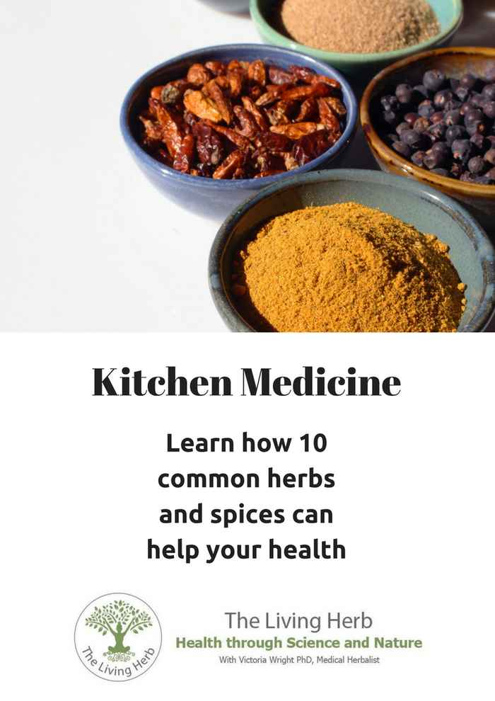 Kitchen-Medicine-Front-page-1.jpg