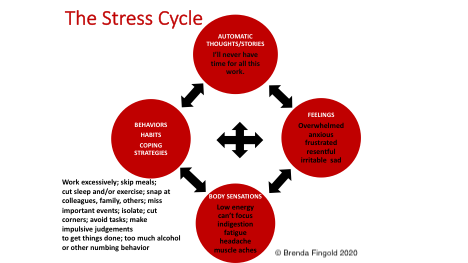 BL00 Fingold Stress Cycle.png