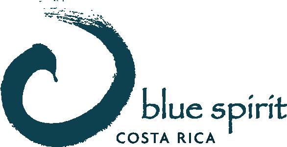 blue-spirit-logo-blue.png