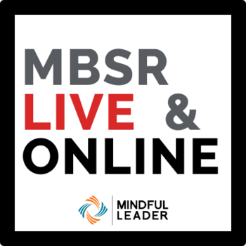 MBSR20 Logo