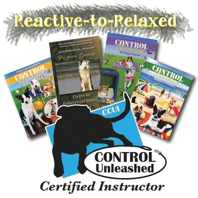 Control Unleashed Online kurs