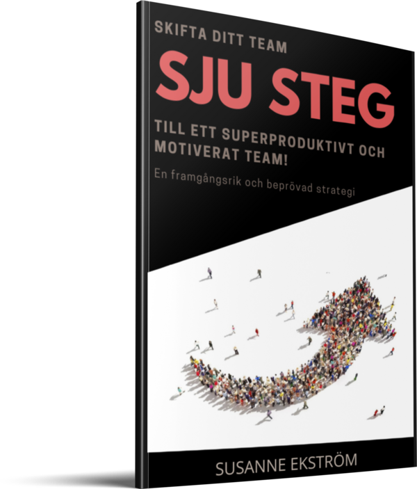 SJU STEG - book cover stor.png