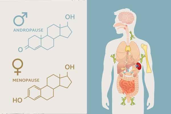 OvergangsAlder Kvinder og Mænd & Inflammationstilstande