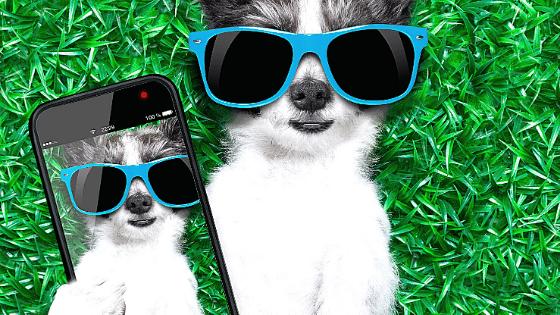 Blog-Selfie