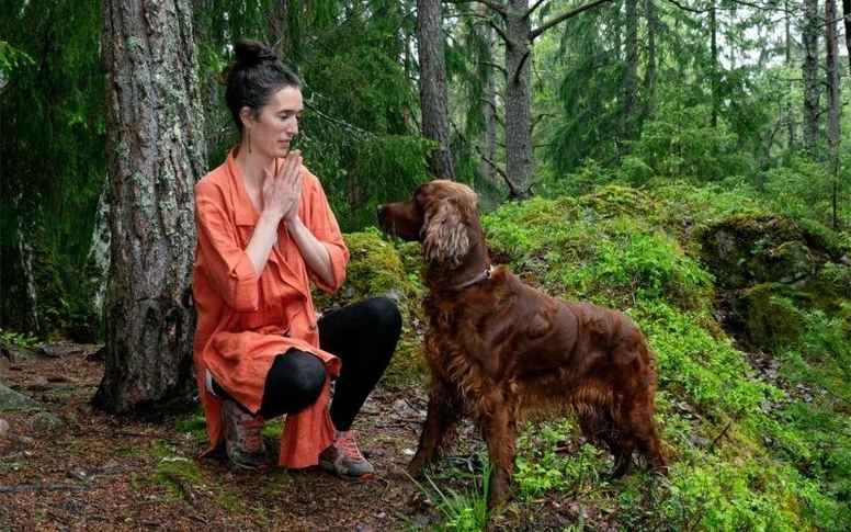 Meditation till Hundägare