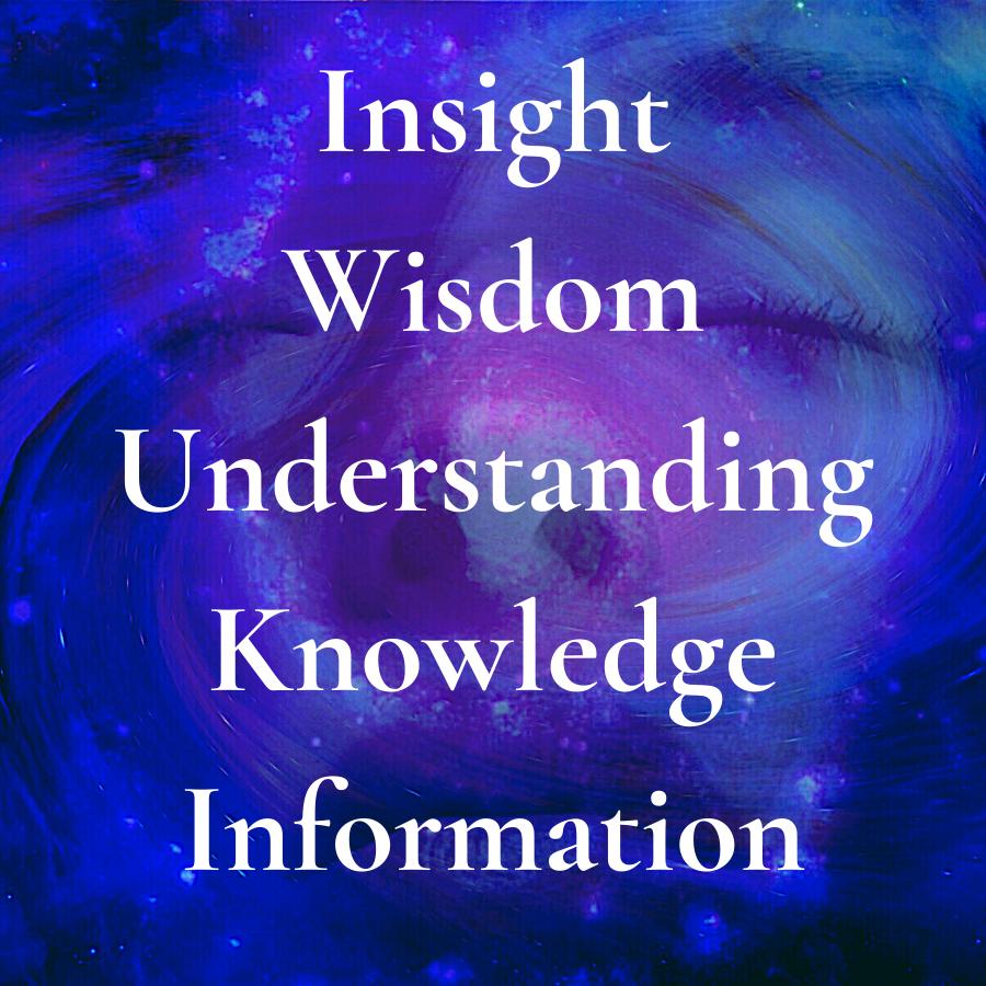Insight Wisdom Understanding Knowledge Information square logo h