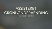 Spot på Assisteret Grønlændervending
