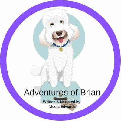 2020 CD - Adventures of Brian Audio CD
