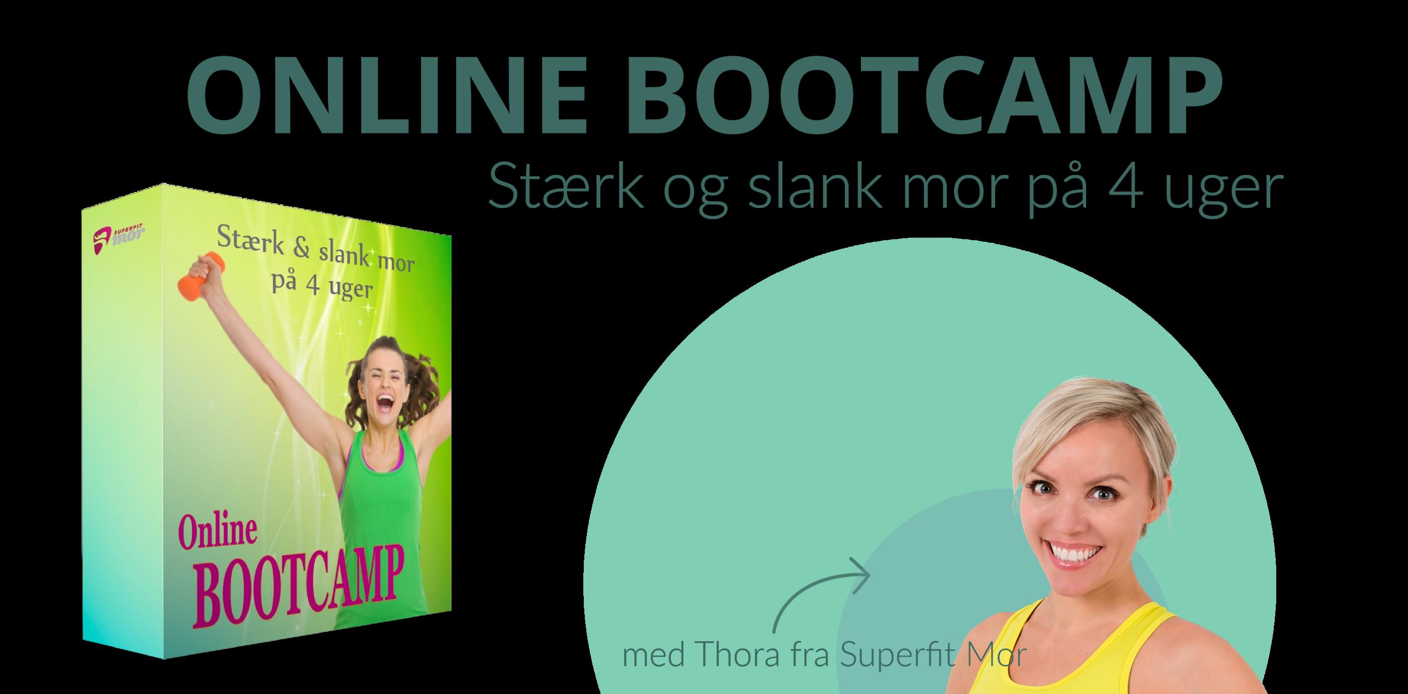 Bootcamp Hero trans. 16-9.png