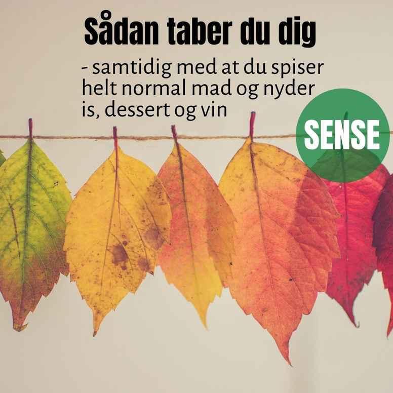 SENSE - KOM i GANG, SORØ