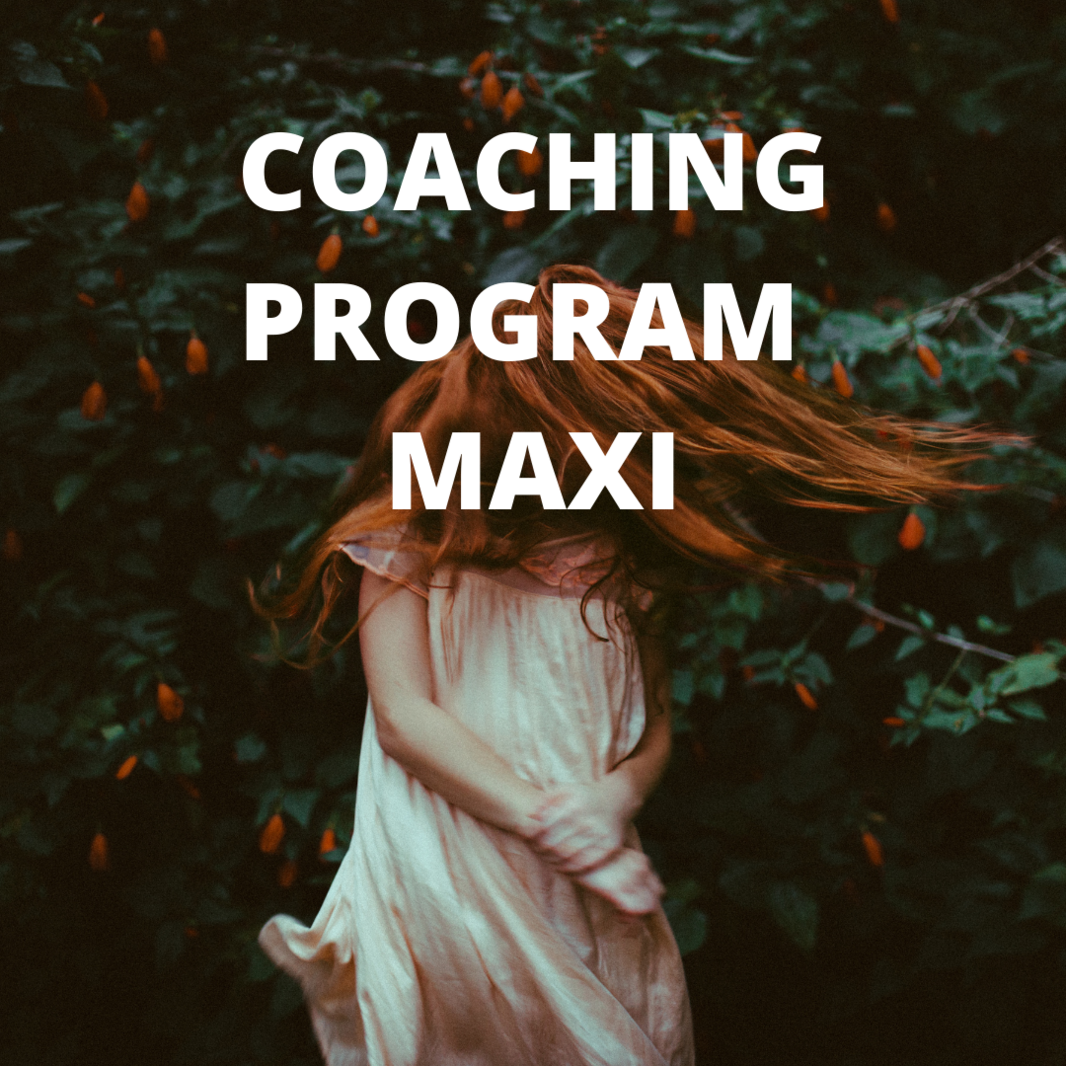 1080x1080 Coachingprogram maxi
