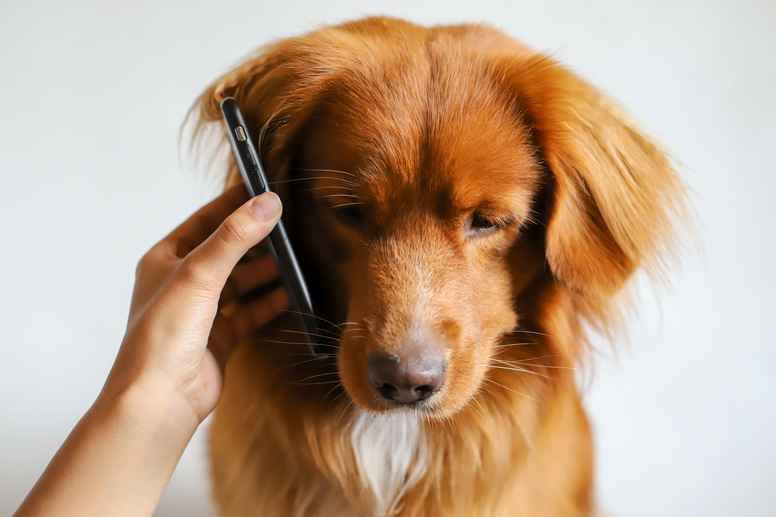 Telefonkonsultation 30 min.