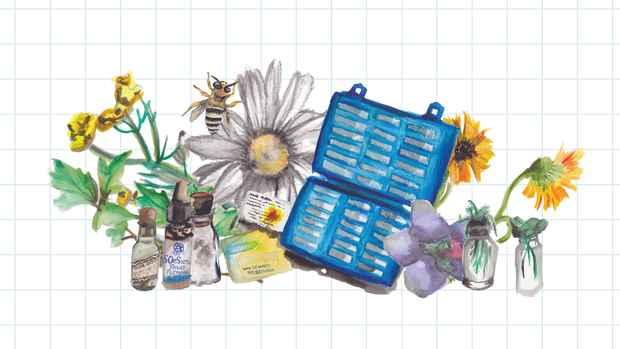homeopathy-wisdom-header-w-back-ground-edited