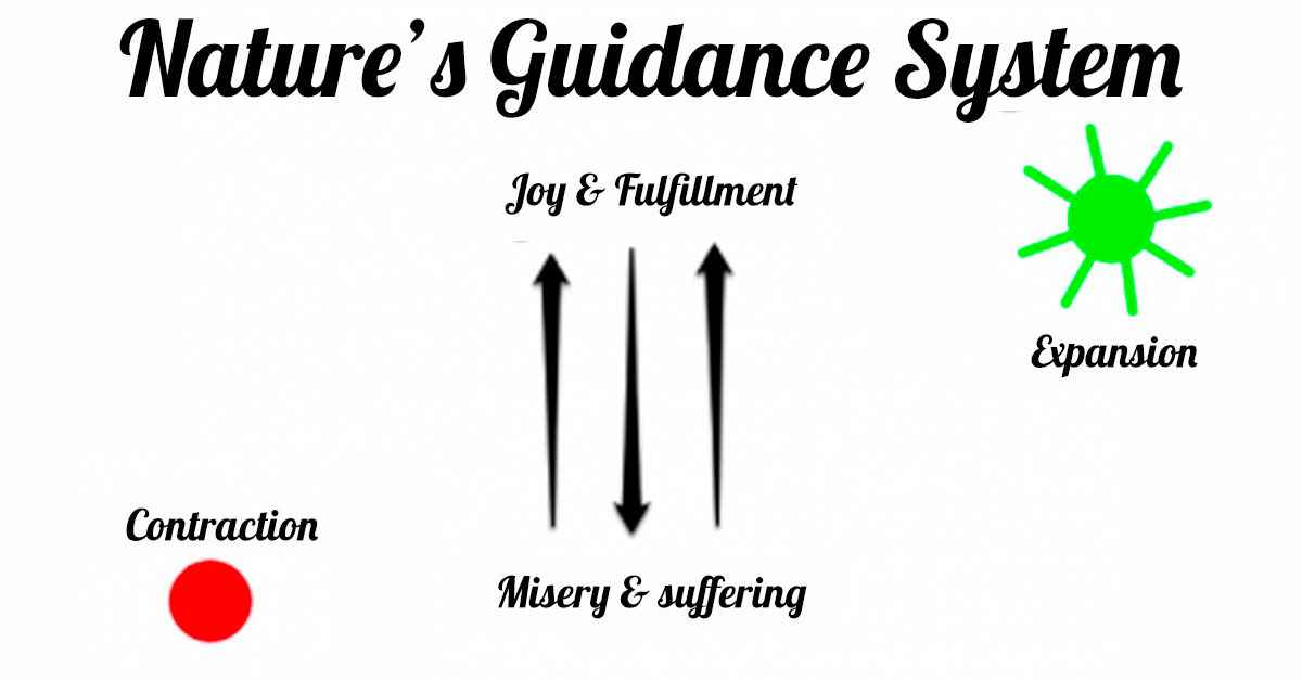 natures-guidance-system.jpg