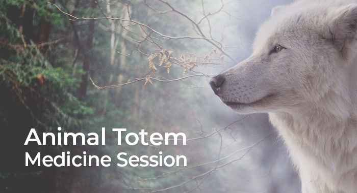 Discover Your Animal Totem Medicine Session