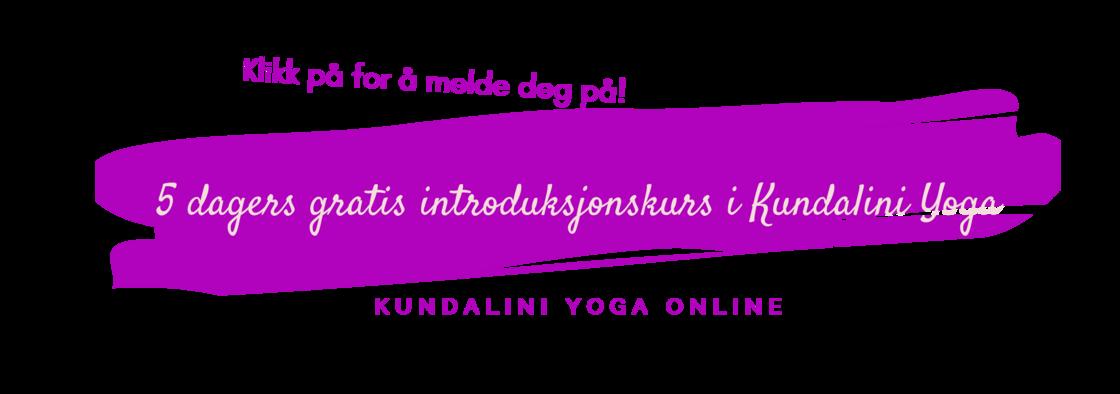 5 dagers gratis banner (1).png