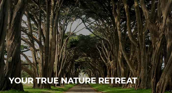 Your True Nature Eco-Spiritual Retreat -Sydney
