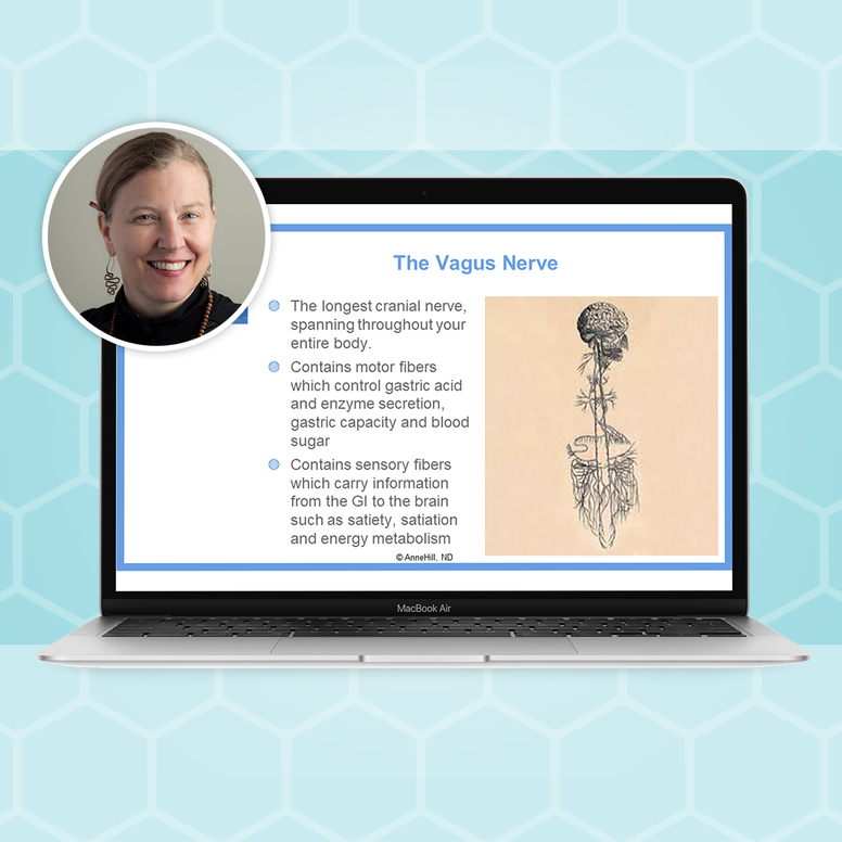 Craniosacral Therapy for IBS & SIBO Masterclass with Dr. Anne Hill, ND