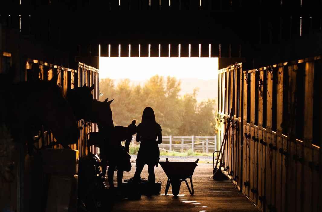 ranch-4426781_1920