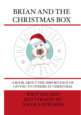MP3 - Brian and the Christmas Box MP3 Story Book