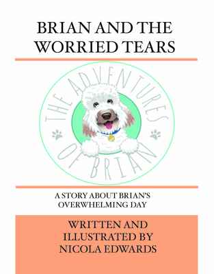 MP3 - Brian and the Worried Tears MP3 Story Book