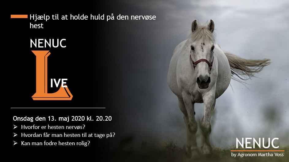 NENUC-LIVE - Huld og nervøsistet 13.05.2020