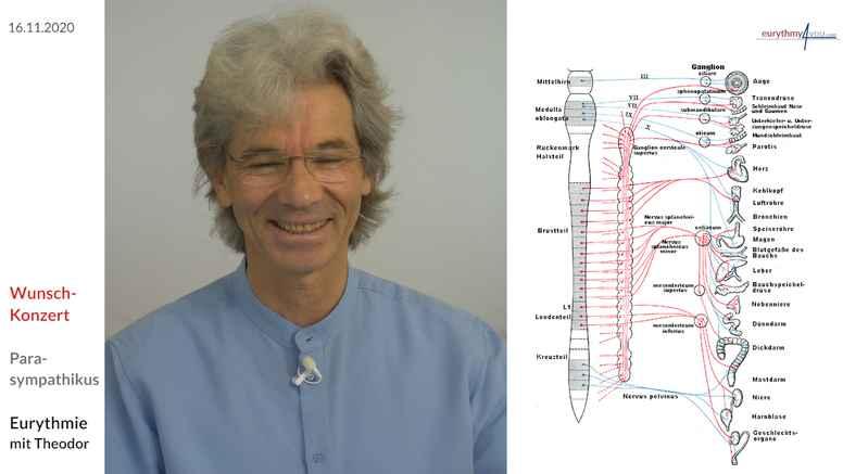 Health for the autonomic nervous system