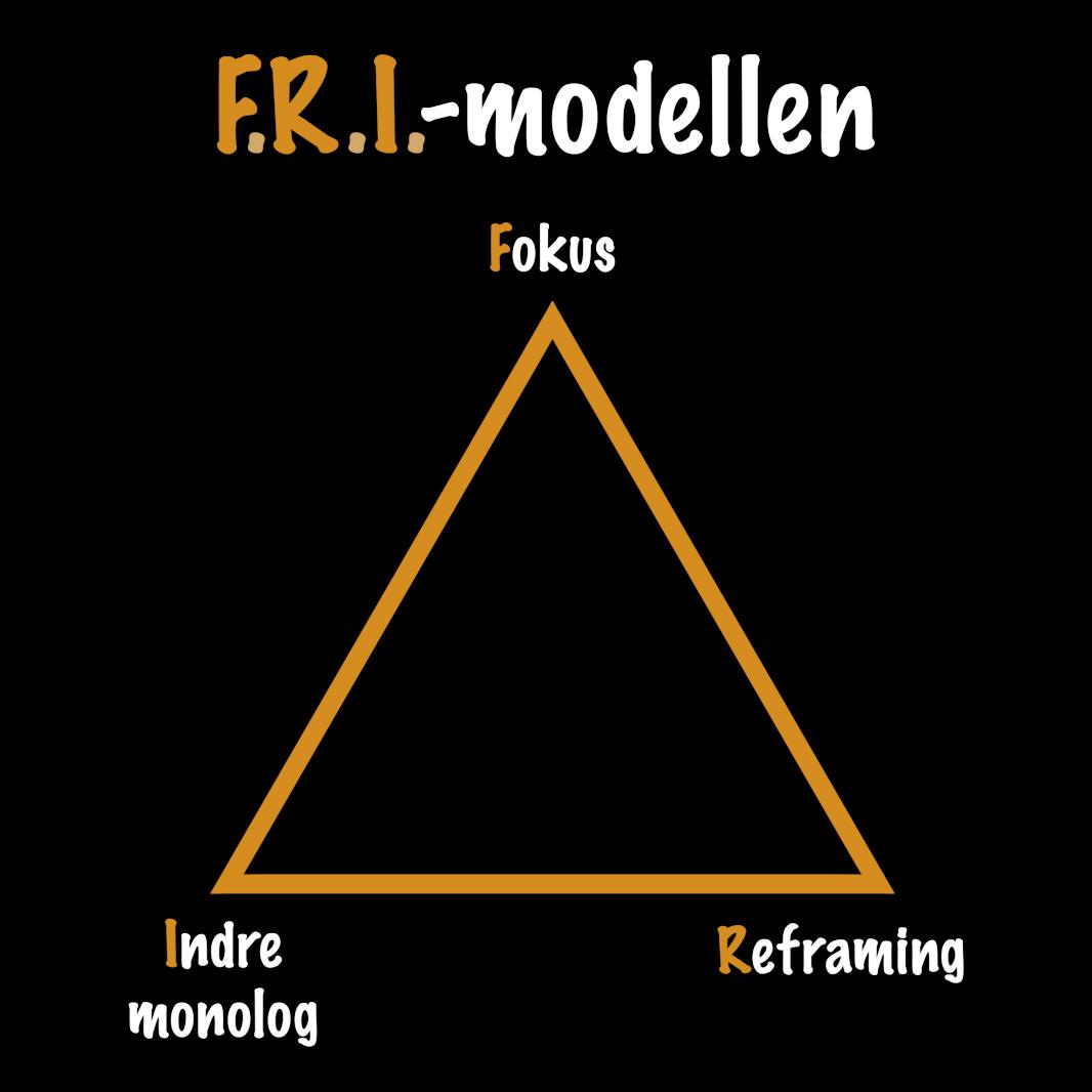 FRI-Modellen 4