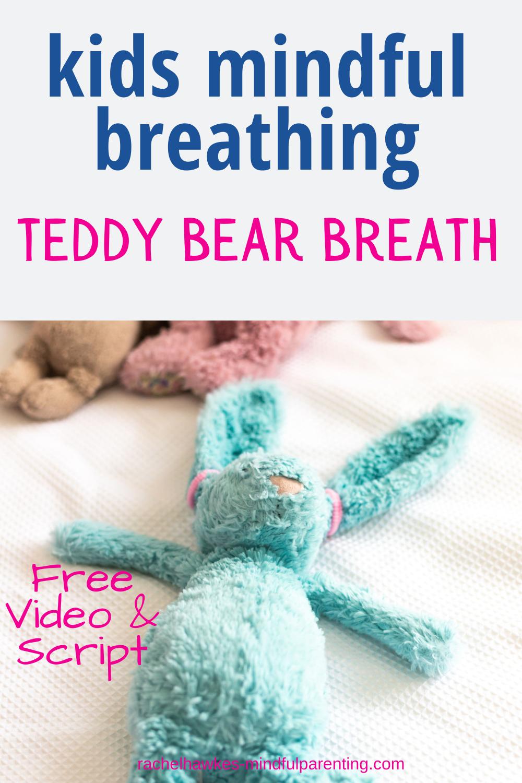 teddy bear breathwork