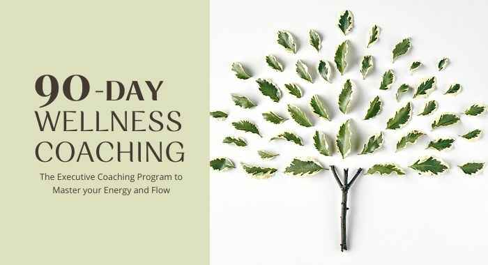 90-Day Wellness Coaching