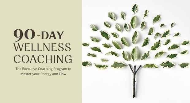 90 Day Wellness Program_header_700x380
