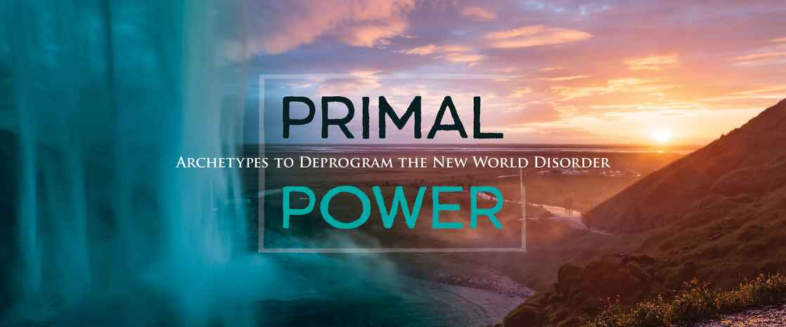 BM Primal Power Hero Banner 2880x1200