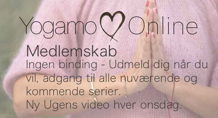 Yogamo Online Medlemskab