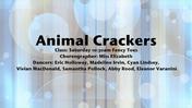 Fancy-Feet-2015-Show-A-04-Animal-Crackers