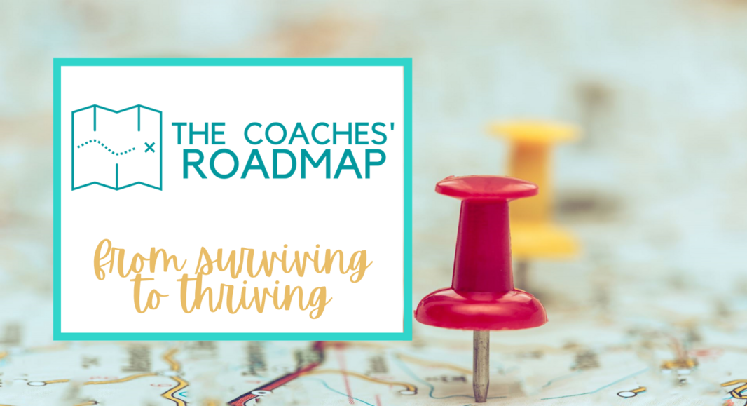 Find Your Coaching Niche (1)