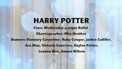 Fancy-Feet-2015-Show-B-08-Harry-Potter