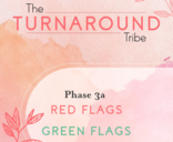 Red Flag Green 3