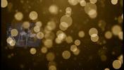 Fancy-Feet-2018-Show-B-10-Light-Up-Christmas