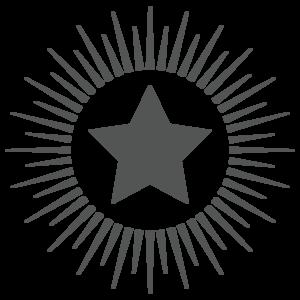 SSWS star logo HIGH RES
