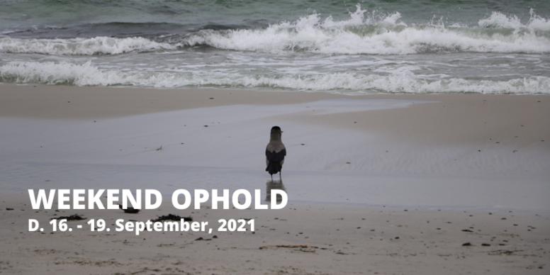 Weekend ophold d. 16. - 19. september, 2021 💚