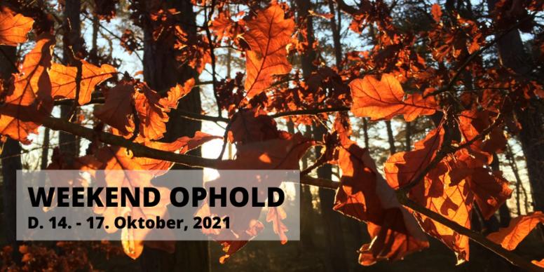 Weekend ophold d. 14. - 17. oktober, 2021 💚
