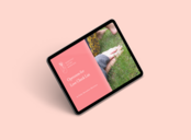 BAW Openness for Love mockup