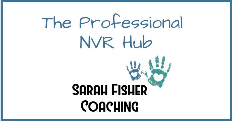 Professionals NVR Hub